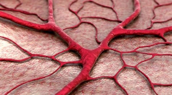 Cinco dicas para prevenir a dilatação de vasos sanguíneos e a formação de edemas e coágulos