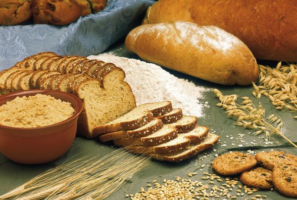 Pão nosso de cada dia nos faltaria hoje sem o manejo de pragas e doenças no cultivo de trigo