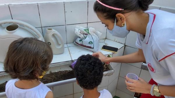 Meio ambiente: contato com plantas desenvolve habilidades das crianças em escola de Natal