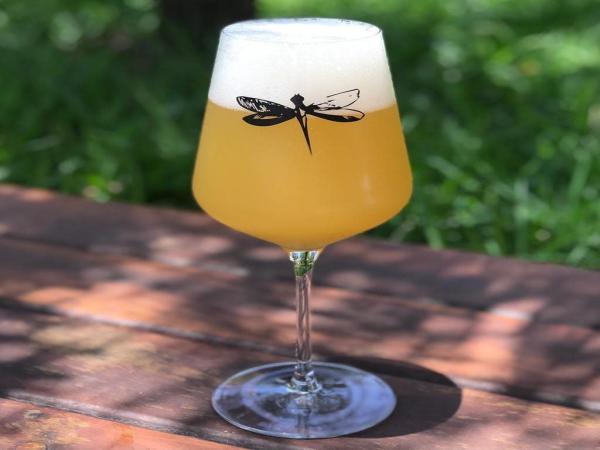 Dia Mundial da Cerveja é celebrado no início de agosto