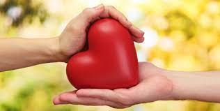 IEA USP e Novartis reúnem especialistas em ciclo sobre saúde cardiovascular
