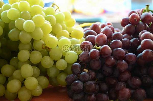 Frutas vermelhas na prevenção ao câncer