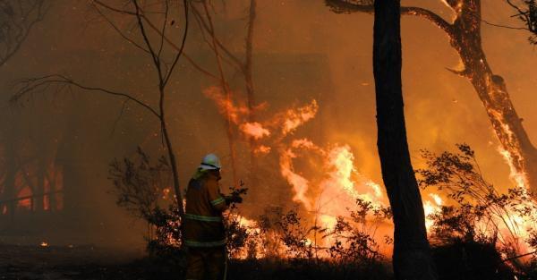 Incêndios na Austrália destroem tudo à sua volta
